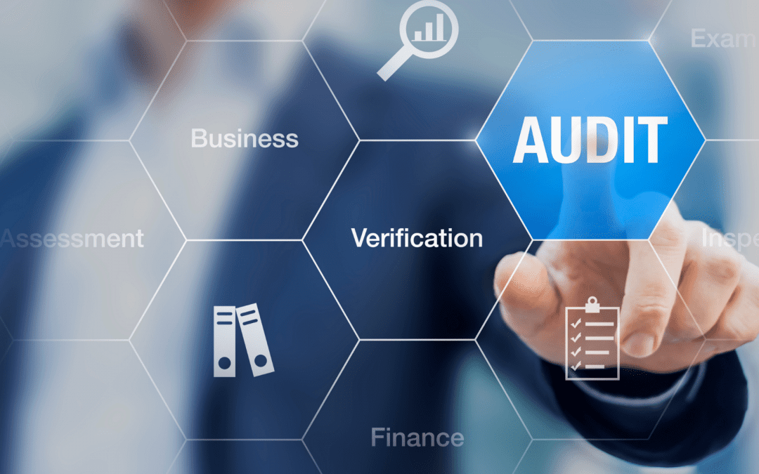 """""""Audit"""" is not a Four-Letter word"""